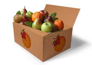 packaging-box_OFD_w_fruit